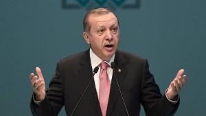 """Erdogan wirft inhaftiertem """"Welt""""-Journalisten Yücel Spionage vor"""
