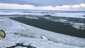 Tsunami-Warnung für Alaska wieder aufgehoben