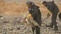 Libanons Strände versinken im Müll