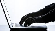 Der deutschen Wirtschaft entsteht durch Internet-Kriminalität jedes Jahr ein Milliarden-Schaden.