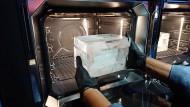 Die Kühlkette funktioniert einwandfrei: Im Eisblock kommt dieser Fisch in den neuen Miele-Ofen.