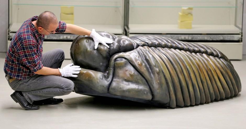 """Dieses Modell des Trilobiten Arcticalymene viciousi, benannt nach dem Sex-Pistols-Bassisten Sid Vicious, war letztes Jahr in der Ausstellung """"Rock Fossils"""" in Chemnitz zu sehen."""
