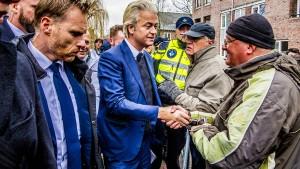Erfolge für Rechtspopulist Wilders