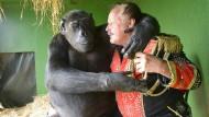 Affe und Mensch: deprimierend wenig Unterschiede