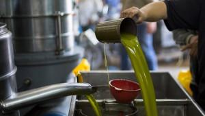 Gutes Olivenöl meist nicht unter 24 Euro pro Liter zu haben
