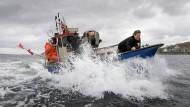 Der schleswig-holsteinische Umweltminister Robert Habeck lässt sich von Fischern im Flensburger Hafen ein Schutzsystem erklären, das den Beifang von Schweinswalen reduzieren soll