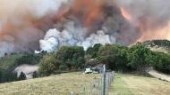 Ein Brand tobt am Mittwoch auf einer Farm bei Knysna in Südafrika.