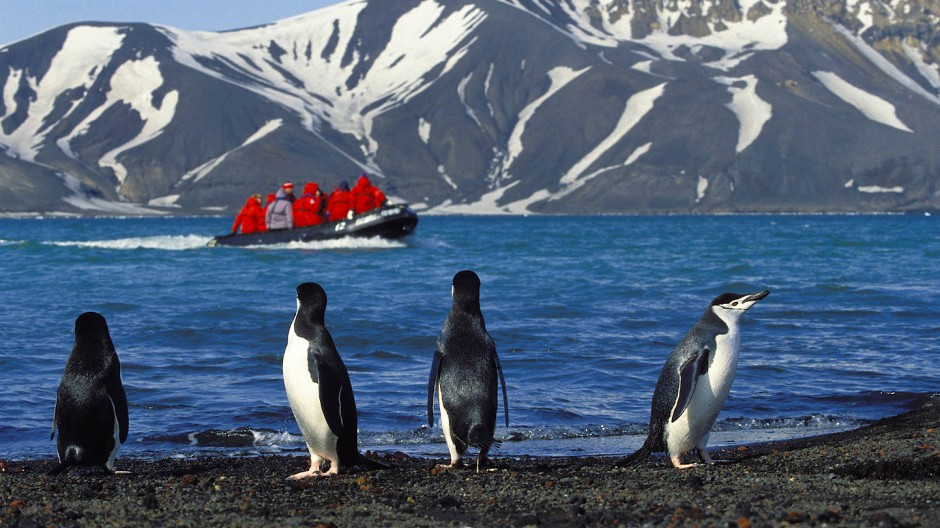Nur nicht die Pinguine stören: Ausflügler vor Deception Island.