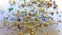Winzige Plastikteilchen flächendeckend in Gewässern