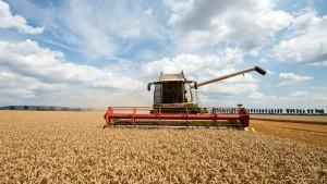 Anlagen auf Agrarmärkten bleiben in Mode