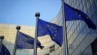 """Praktikum in Brüssel: """"Lobbying hat nichts mit Schmiergeld zu tun"""", sagt Regine Wehner."""